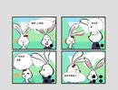 聪明的兔子